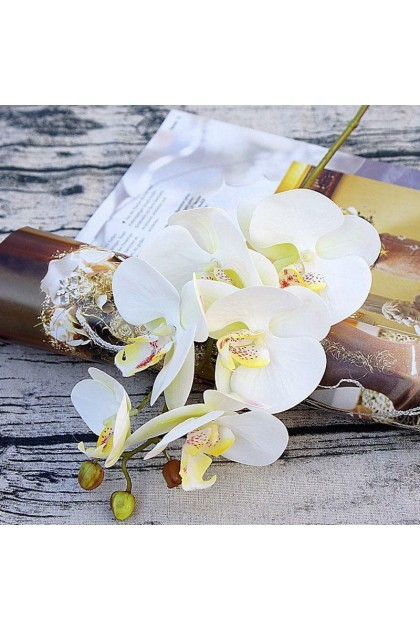 (Ready Stock) Artificial Fake Silk Flower Phalaenopsis Orchid Floral Party Home Wedding