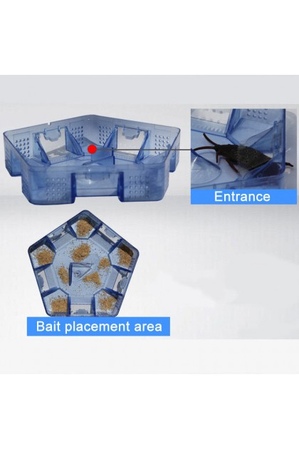 (Ready Stock) Pest Control Tool Cockroach Trap Container Collect Killer Catcher Home 3 Doors